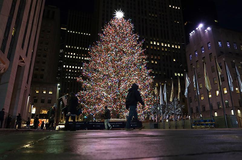 Началась пора елок - первая зажглась в Нью-Йорке