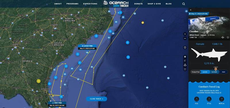 онлайн-карта популяции морских животных
