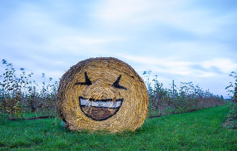 Веселый стог сена на полях немецкого Ронненберга