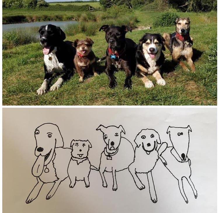 Pet Portraits By Hercule - необычное искусство рисования