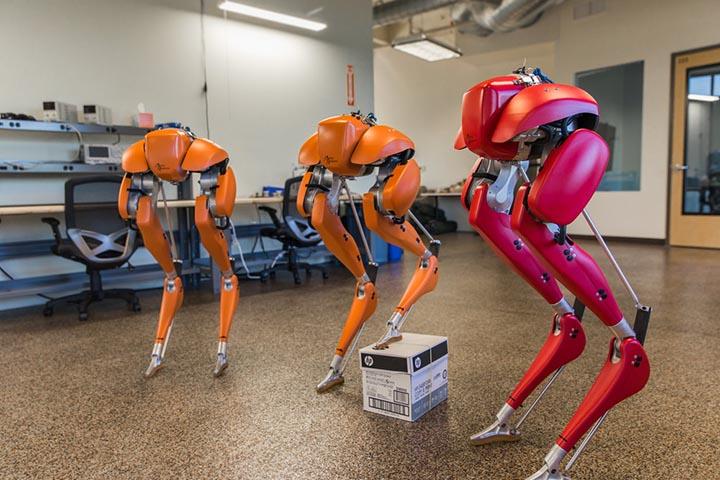 Robotic22