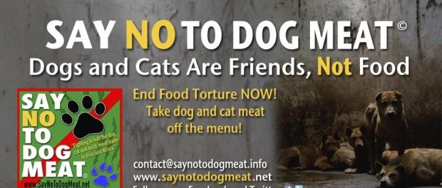 Китайцы стали отказываться от собачьего мяса