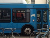 необычный автобус для стартаперов