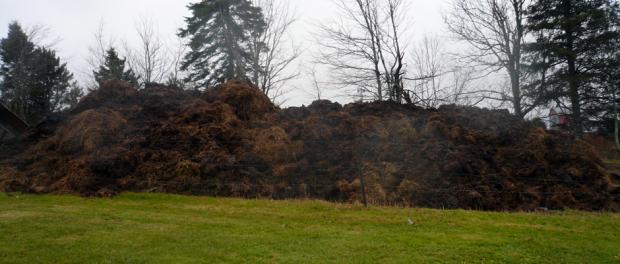 Необычный забор стал причиной 15-тысячного штрафа для канадских фермеров