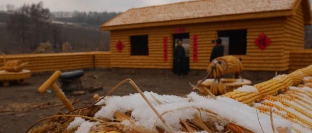 Китаец построил ферму из кукурузных початков
