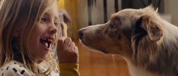 Великолепная история собачьей любви в рекламе IKEA
